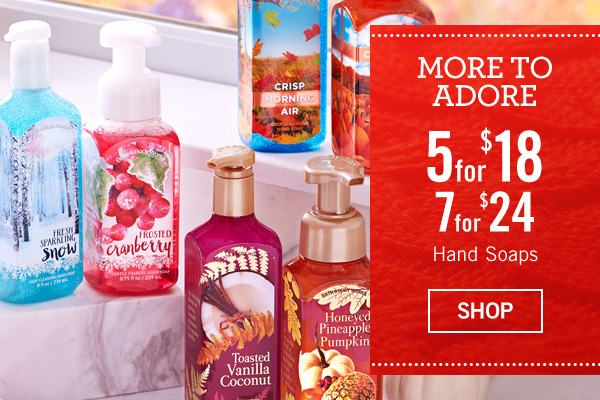 More to adore - 5 for $18 or 7 for $24 Hand Soaps - SHOP