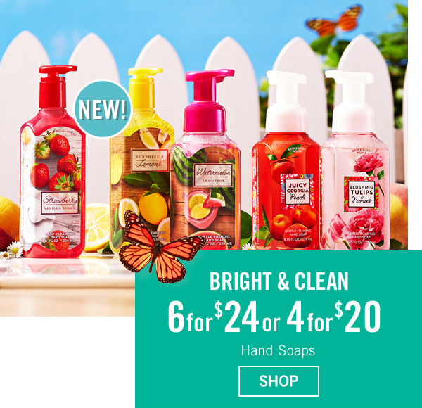 Bright & Clean - 6 for $24 or 4 for $20 Hand Soaps - SHOP